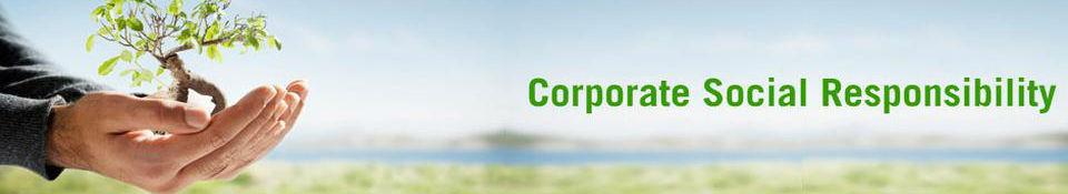 CSR Environ
